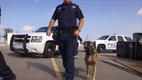 Pflugerville Police Department, TX